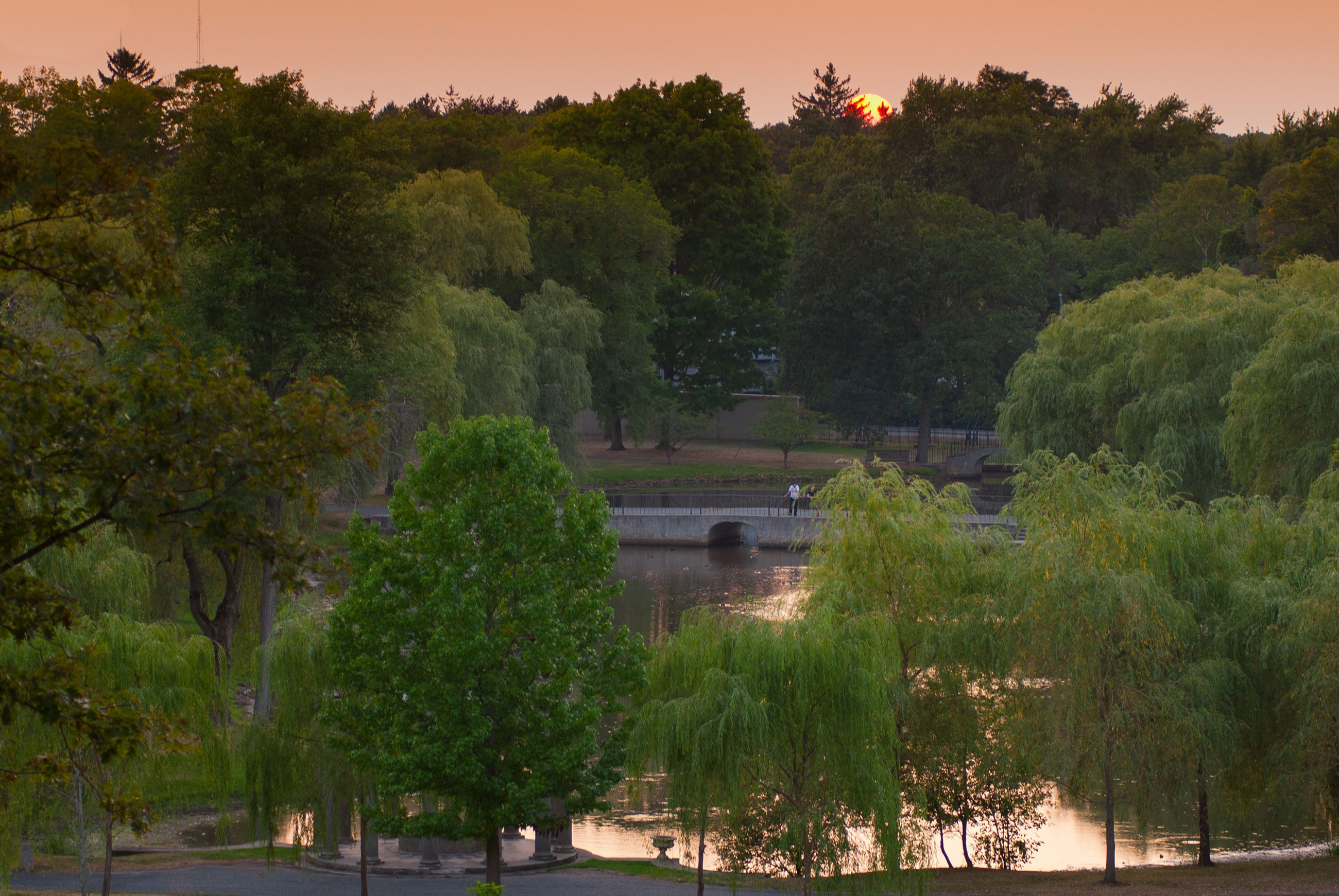 Picture of sunset over Larz Park with trees surrounding the lagoon